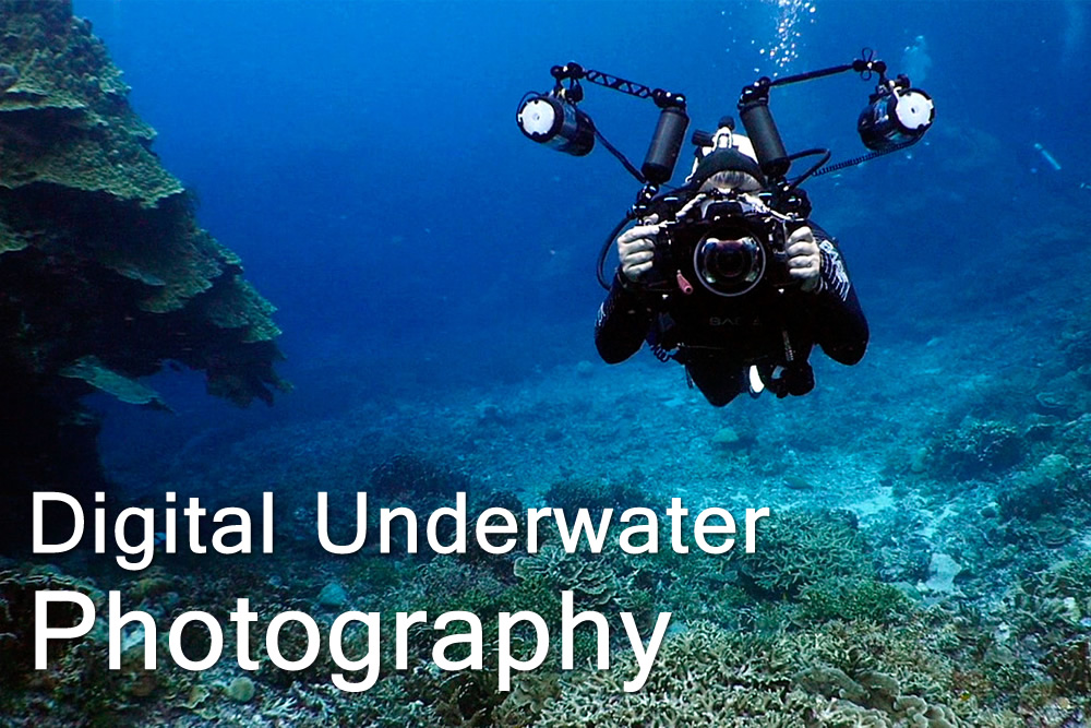Digital Underwater Photography - Escola de Mergulho