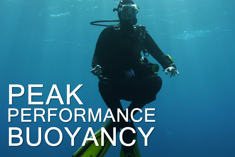 Peak Performance Buoyancy - Escola de Mergulho
